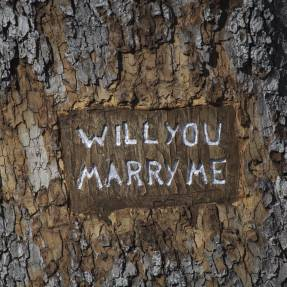 Leap Year Proposals – How To Get it Right